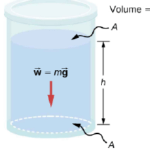How does pressure vary with depth in a fluid of constant density? |  with the equation of the fluid pressure
