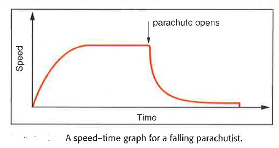 speed-time graph of the falling parachutist or skydiver.
