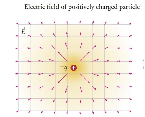 If the source charge is positive, the field is directed away from the source.
