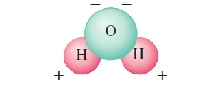 """water molecule 