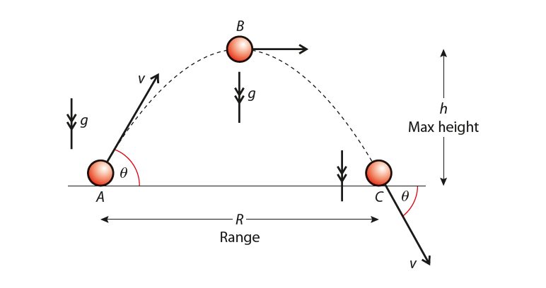 finding the acceleration, velocity and displacement of a projectile at different points on the parabolic trajectory of projectile