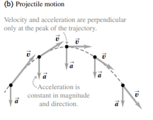 figure 2: Projectile motion with distinguishing features as compared to uniform circular motion