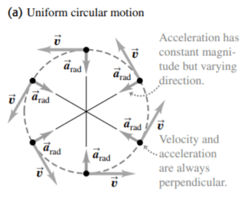 figure 1: Uniform Circular Motion with distinguishing features as compared to projectile motion