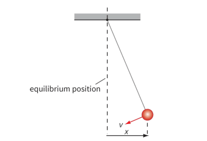 Figure 1: This swinging pendulum has positive displacement x and negative velocity v.