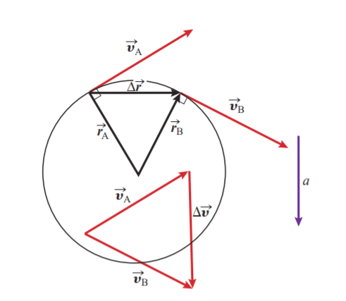 Fig 2: The change in the velocity vector and, therefore, the acceleration vector, are perpendicular to the change in the position vector.