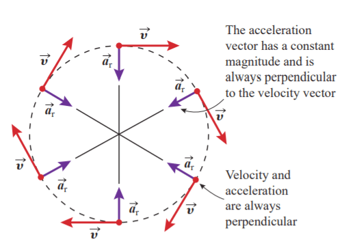 Fig 4: The acceleration vector is always perpendicular to the velocity vector.